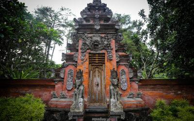 Polak na Bali